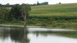 Rural à venda LUZ   Fazenda à venda, 5000000 m² por R$ 21.000.000, Luz Minas Gerais