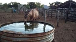 Rural à venda RODOVIA DF-001   585 ALQUEIRES 80%PLANA 10 KM DE RIO