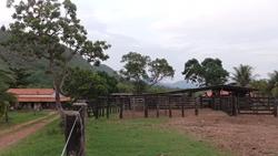 Rural à venda CAVALCANTE