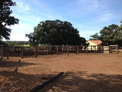 Rural à venda FLORES DE GOIAS