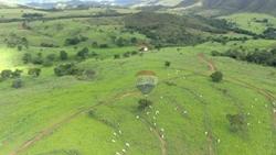 Rural à venda COCALZINHO DE GOIAS   Fazenda para agropecuária 2256 ha - Padre Bernardo/Cocalzinho-GO