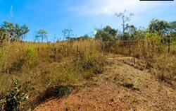 Rural à venda Rodovia DF-251   Chácara à venda, 8000 m² por R$ 2.000.000 - Setor Habitacional Jardim Botânico - Brasília/DF