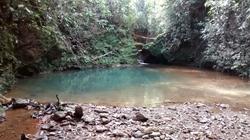Rural à venda Ponte Alta Norte   Contato com a natureza