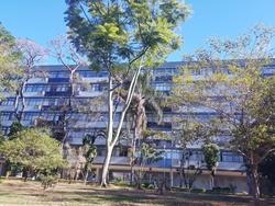 Apartamento para alugar SQS 112   Nascente com vista livre
