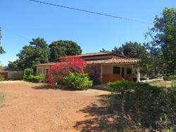 Rural à venda Núcleo Rural Incra 7   Espetacular Chácara C/ Plantio de Uvas, Granjas, C/ 4.6 Hect, Para Investidor e Bem Localizado!