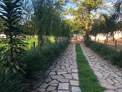Rural à venda RODOVIA DF-001   02 Chácaras com 3 dormitórios à venda, 36400 m², Paranoá, DF