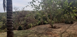 Rural à venda RODOVIA DF-001